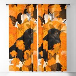 Beautiful Autumn Blackbirds with butterflies and Orange Maple Leaves #decor #society6 #buyart Blackout Curtain