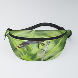 Dragon Fly 5 Fanny Pack