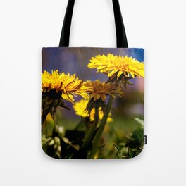 Concept flora : Dandelions in a field Tote Bag