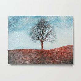 winter moments Metal Print