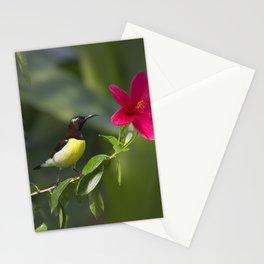 Purple Sunbrid Stationery Cards