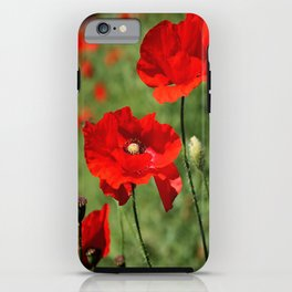 Poppy Trio iPhone Case