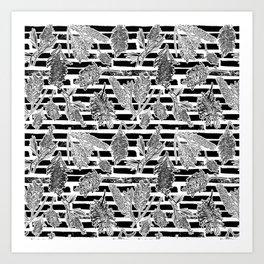 Beautiful Black and White Australiana Print Art Print