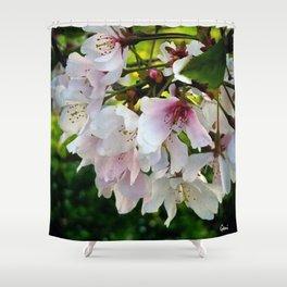 Cheery Cherry Blossoms Shower Curtain