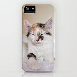 Sleepy cat (II) iPhone Case