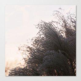 Winter's Breath Canvas Print