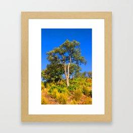 Cork-Oak Framed Art Print
