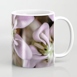 Milkweed flower close up Coffee Mug