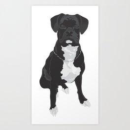 The Black & White Boxer Art Print