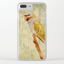 Derbyan Parakeet I Clear iPhone Case