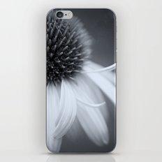 Black and White Coneflower iPhone & iPod Skin