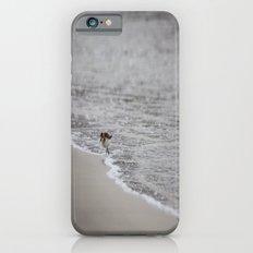 Lonely Sandpiper iPhone 6s Slim Case