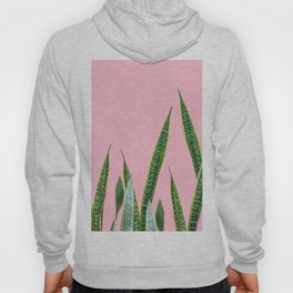 Snake plants with pink Hoody