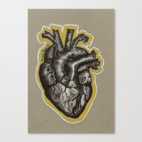 anatomical heart Canvas Prints featuring Anatomical Heart by Micaela Payne
