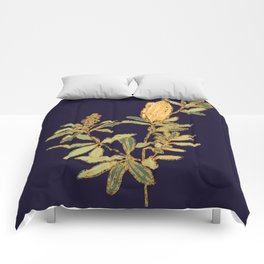 Banksia on Indigo Blue Botanical Illustration Comforters