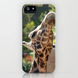 Baringo Giraffe iPhone Case