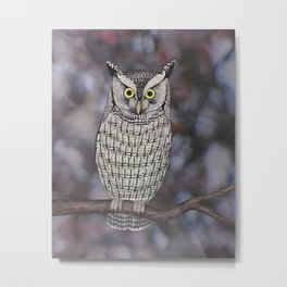 eastern screech owl on a branch Metal Print