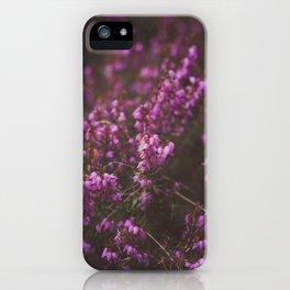 Purple Little Flowers in My Garden iPhone Case