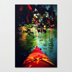 Winn Dixie Canvas Print