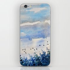 black birds, blue sky iPhone & iPod Skin