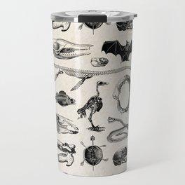 Various Animal Skeletons Travel Mug