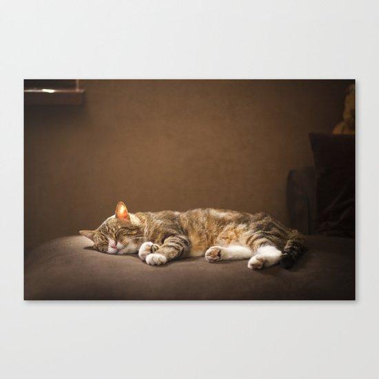 Cat sleep Canvas Print