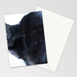 Simon the Black Halloween Sanctuary Cat Stationery Cards