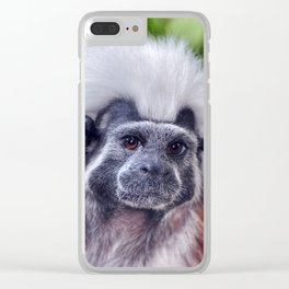 The Cotton-top Tamarin Clear iPhone Case