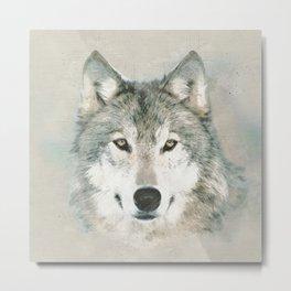 The Gray Wolf - Sketch Metal Print