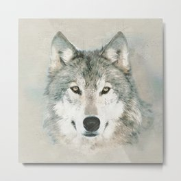 The Gray Wolf - Sketch Metal Print