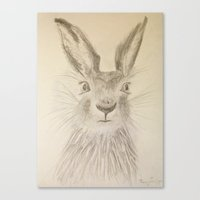 hare Canvas Prints featuring Hare by Lyubov Fonareva