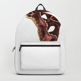 Moth in Color Backpack