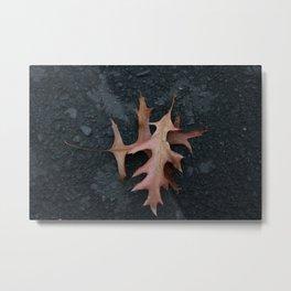 Autumn DPG150517a Metal Print