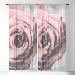 Rusty Blush Sheer Curtain