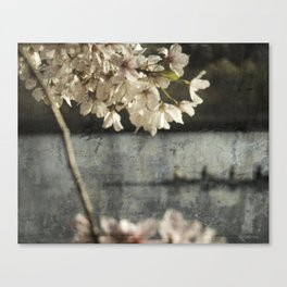 spring glide Canvas Print