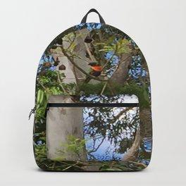 bird spotting Backpack