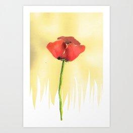 The Poppy Art Print