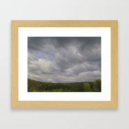 Forest View Framed Art Print