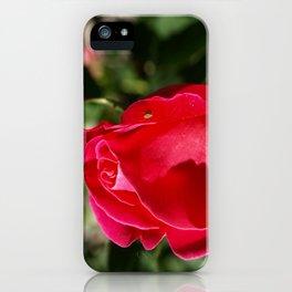 """Rose Bug"" iPhone Case"