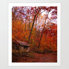 Autumn Shed Art Print