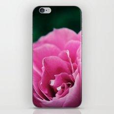 Flower in Bloom iPhone & iPod Skin