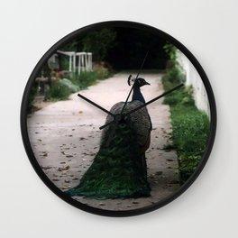 Peacock Path Wall Clock