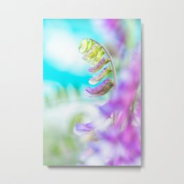 Fresh purple flowers on a blue background Metal Print