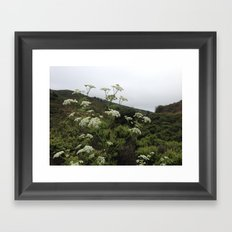 Wildflower Hills Photograph Framed Art Print