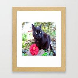 Luna, the black queen Framed Art Print