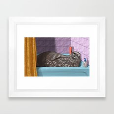 Domestic Seal Framed Art Print
