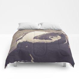 Adorable African Penguin Series 1 of 4 Comforters