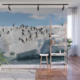 Gentoo Penguin playtime at your local iceberg Antarctica Wall Mural