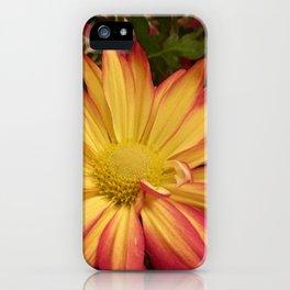 Fiery Flower iPhone Case