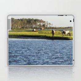 Chincoteague Ponies on Assateague Island Laptop & iPad Skin